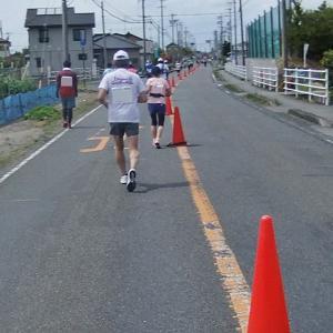 写真でつづる「第14回掛川・新茶マラソン」8