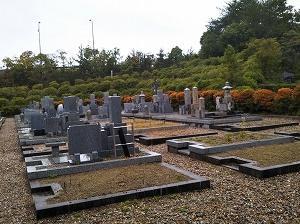 一周忌の墓参り