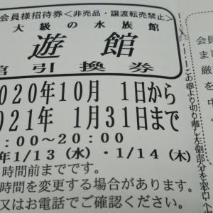 日本フルハップさんで海遊館の入場券が当選しました。