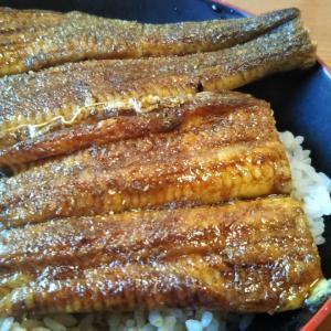 """姫路の""""ます徳""""でうな丼を頂きました。"""