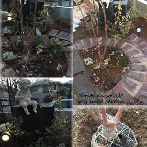 +++西のフロントガーデン+++ 私の庭づくり2016*