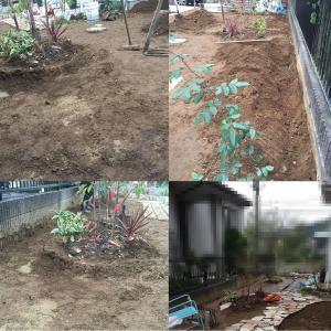 私の庭づくり2016* ++南は秘密の花園++