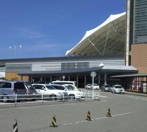 ジェラーニオ出走結果 2019年8月17日新潟 3週連続で3歳未勝利馬が出走しましたが全馬惨敗でした