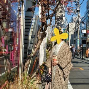 【お勧めの着物de散策スポット】原宿界隈。おとなの街でしっとりおとなの装い