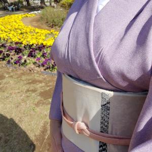 江戸小紋に袖を通してみました!やわらかものは、やはりお出かけ着ですね。