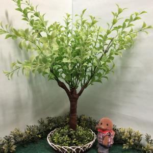 シルバニアサイズのなんちゃっての木を作る(オレガノ編)