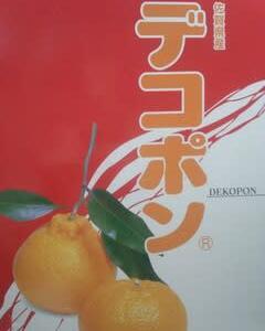 JAグループ佐賀、デコポン(3kg)プレゼントキャンペーン当選しました!!