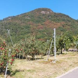 松代町の尼巌山(あまかざりやま・標高780m)で移動運用