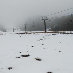 今年初めてスキーに(1月12日・日曜日)