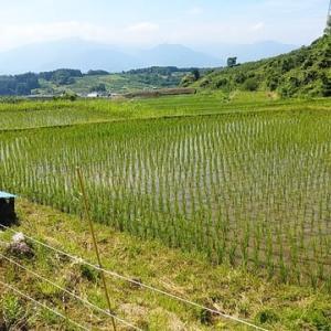 髻山へ移動運用に(6月26日・水曜日)