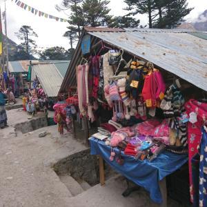 インド10日間の旅⑧温泉、そしてガントクへ帰還。