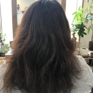 傷んだ髪は切るのが一番