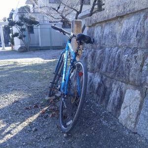 サイクリング!
