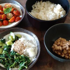 自家製野菜の昼食