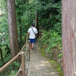 猿田彦三河神社~猿投神社