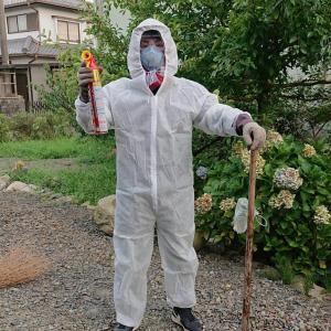 スズメバチの巣を駆除