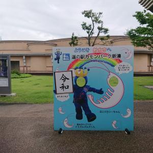 道の駅カモンパーク新湊のノドグロの成長報告<゜)))彡
