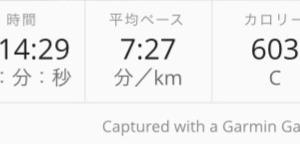 寒い夜のラントレ10km