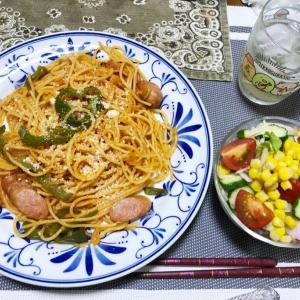 実家の晩ごはんや姉夫婦の晩ごはんを覗く、パピヨン好きな人は写真あります、本日のお弁当