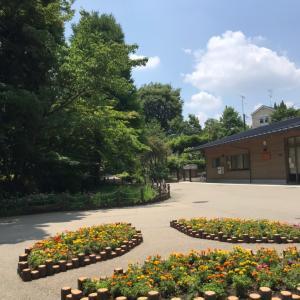 赤塚植物園へ
