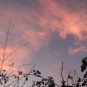 ~黄昏前・・pinkcolorの空~
