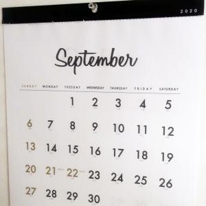 ++8月の人気記事*&つぶやき++