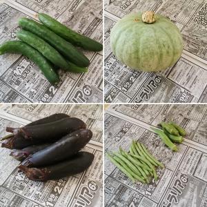 ++夏のお野菜便&お土産*++