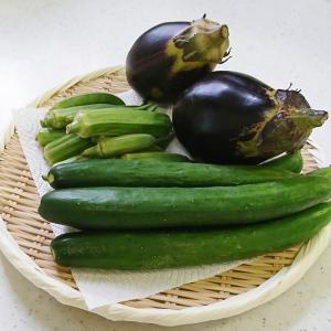 ++お野菜便&当選品*++