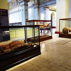 エジプト考古学博物館~サッカラで発見されたばかりの棺~