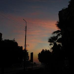 今朝の空とわんこ