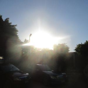 夏至の日の朝