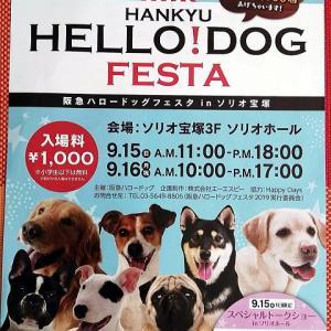 15日(日)16日(月祝)はハロードッグフェスタ2019に出店します♪