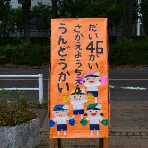 第46回 さかえ幼稚園 運動会