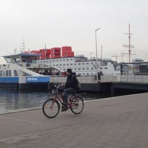 巨大倉庫の蚤の市、IJ-Hallen@アムステルダム(オランダ買い付け日記 その11)