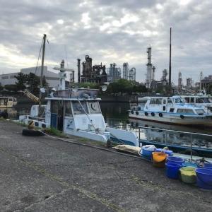 遠征!GW第2戦は川崎新堤で黒鯛。。じょんていらーの釣日記(Vol.267)川崎新堤堤防2019.04.29