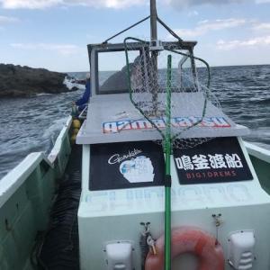 遠征!富浦の磯「サメ」貸切でしたよ。結果は。。じょんていらーの釣日記(Vol.271)富浦大房岬サメ2019.05.16