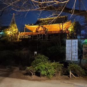人、神、自然 ザ・アール・サーニ・コレクション@東京国立博物館