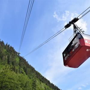 DCL★Juneau〈Mount Roberts Tramway①〉