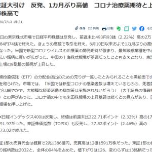 ノムラシステムがストップ高になるなど90万円の上昇