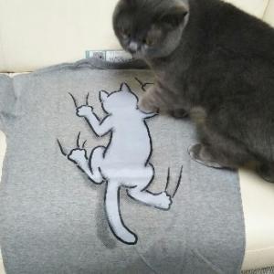 猫絵柄のTシャツ