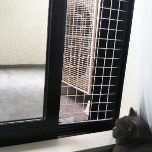 猫飼いの網戸対策