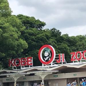 王子動物園へGO☆