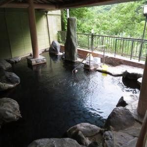 湯河原温泉(第133号) 大滝ホテル ★