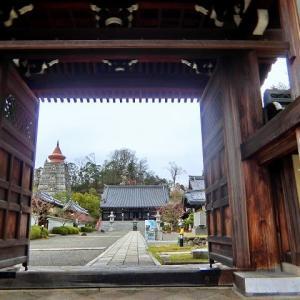 妙満寺の櫻