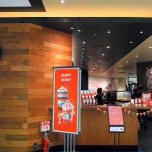 STARBUCKSイオンモール京都店