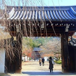 秋の「醍醐寺」
