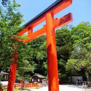 新緑「下鴨神社~糺の森~河合神社」