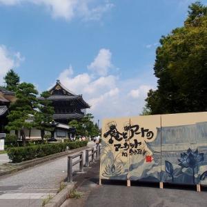 サマーフェスタ下京区