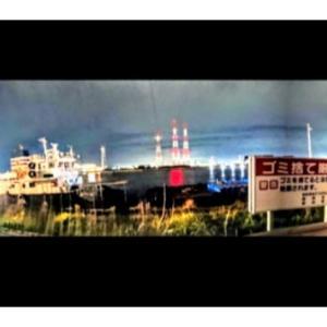 今日も、鹿島の港に釣行!しかし、活性ない海でした。