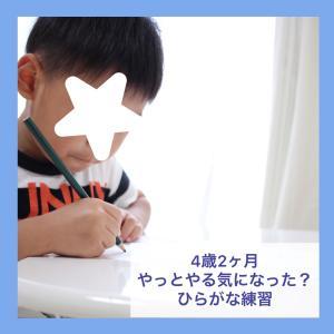 *《無料ダウンロード》4歳2ヶ月 ひらがなに興味のない息子、名前が書けるように?…*